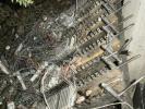 שיקום נזק שריפה-מרכזיה קיבוץ אפיק